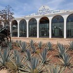 Tequila Distillery Tour