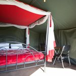 Serengeti Wildcamps