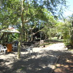 relax in luscious indigenious bush while planespotting
