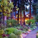 Our magical garden path