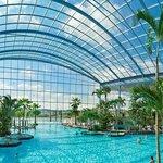 Panorama Palmenparadies