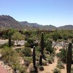 Scottsdale four seasons
