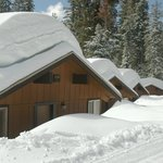 Sequoia cabins