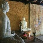 buddha statues overlooking the yoga shala