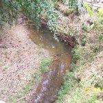 A stream at La Vega
