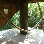 treehouse hammock 2