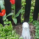 Bunny & Spring Tulips at The Lilac Inn