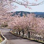 Kirishima Shinwanosato Park