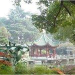 Shanghai Lilac Garden Foto