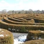The Peace Maze