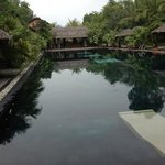 The wonderful pool