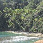 Dominica, pure nature