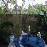 Rigils Lembongan Bungalows Foto