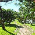 Gardens at Lantana