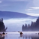 Rivière Rouge en kayak!