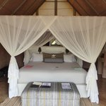 Our tented suite