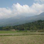 Photo stop on the way to Kolukkumalai tea plantation