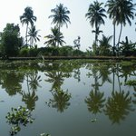 Fantastische Backwaters van Kerala