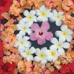 Bloemenpracht, dagelijks in de tuin Varphu