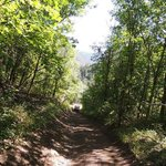Paiute Trail