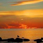 Sunrise by Beachside Village - Surf Drive Beach, Cape Cod, MA