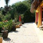 Casa Coco Terrace