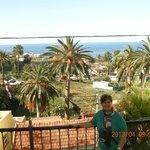 Vista del palmeral y el mar desde habitación.