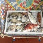 Fantastic Fresh Fish at Pierrot
