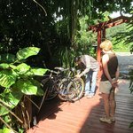 borrowing the bikes to ride to Placencia