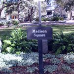 Garden in Madison Square