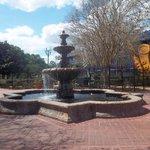 Rose Garden / Fountain