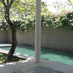 Private pool in Villa 'Nias'