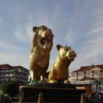 ゴールデンライオンです