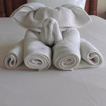 Cute little elephant made of towel... The little thing makes a diffrence and welcoming.