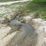 Les égouts se déverse directement sur la plage du Sofitel