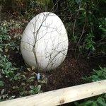 Dinosaur egg!