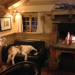 The dog of the house, in its favourite couch, by the fireplace!