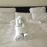 Towel animal at Secreto!