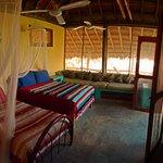 Tree house room.