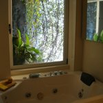2 Person Jacuzzi & Hanging Gardens