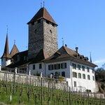 Spiez - Castle