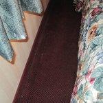 Cookie Crumbs on rug