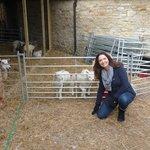Sally Newson at Brittons Farm