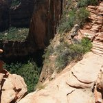 1200 ft Above the Canyon Floor AUG 2010