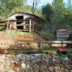 Miner's cabin...