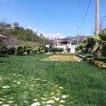Ingresso - giardino