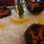 Des oursins bien pleins -- c est à la Brasserie Guillaume