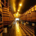 El interior donde está las cuvas y se realiza la elaboración de los vinos