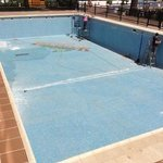 swimming pool suffering drought