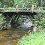 Ponte romântica